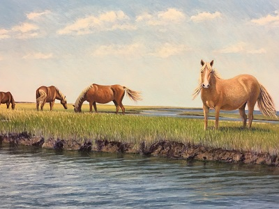 """Wild Horses of Shackleford Banks"""